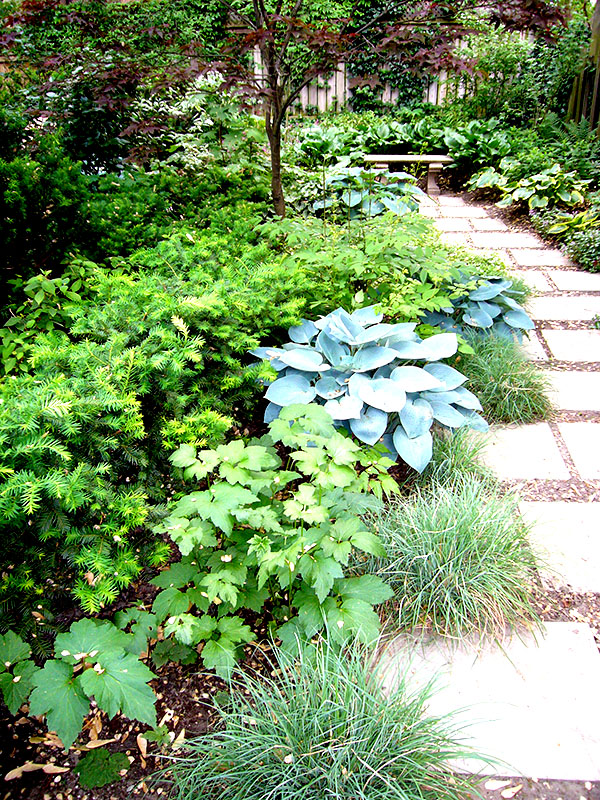 Curved Stone path flanked with perennials