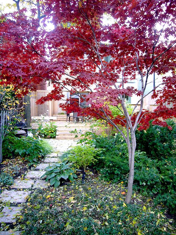 Stone path curving through garden