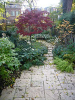 curving stone path through a perennial planting with a red maple in the background